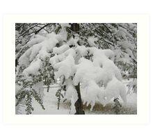 Feb. 19 2012 Snowstorm 23 Art Print