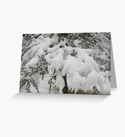 Feb. 19 2012 Snowstorm 23 Greeting Card
