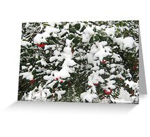 Feb. 19 2012 Snowstorm 24 Greeting Card