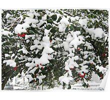 Feb. 19 2012 Snowstorm 24 Poster