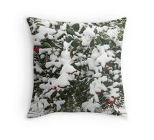 Feb. 19 2012 Snowstorm 24 Throw Pillow