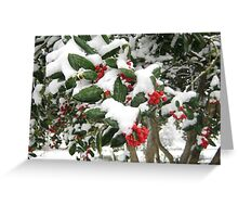 Feb. 19 2012 Snowstorm 25 Greeting Card