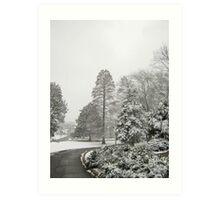 Feb. 19 2012 Snowstorm 26 Art Print