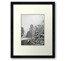 Feb. 19 2012 Snowstorm 26 Framed Print