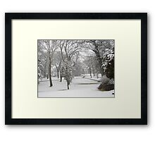 Feb. 19 2012 Snowstorm 28 Framed Print