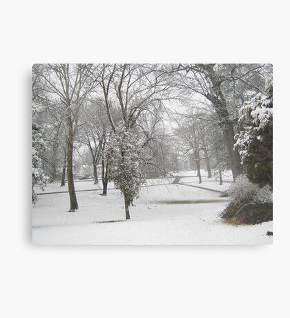 Feb. 19 2012 Snowstorm 28 Metal Print
