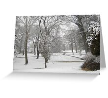 Feb. 19 2012 Snowstorm 28 Greeting Card