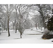 Feb. 19 2012 Snowstorm 28 Photographic Print