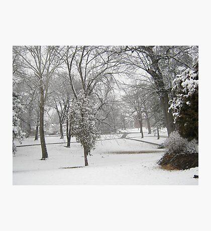 Feb. 19 2012 Snowstorm 28 Photographic Print