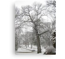 Feb. 19 2012 Snowstorm 29 Canvas Print
