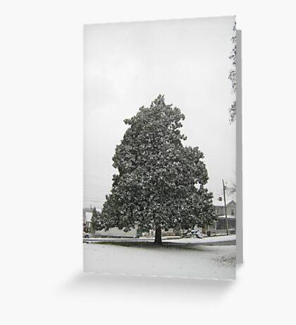 Feb. 19 2012 Snowstorm 30 Greeting Card