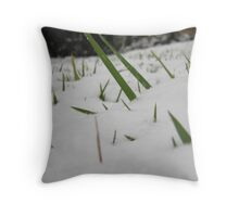 Feb. 19 2012 Snowstorm 32 Throw Pillow
