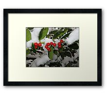 Feb. 19 2012 Snowstorm 33 Framed Print