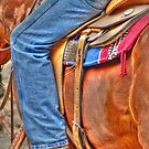 Colors of the Rodeo by WolfPause