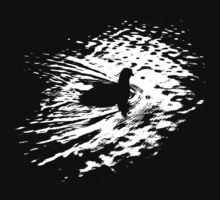 Coot, silhouette as swimming on a pond by Lenka