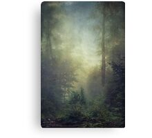 secret domain Canvas Print