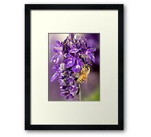 Purple Is My Favorite Color - Its BEEutiful Framed Print