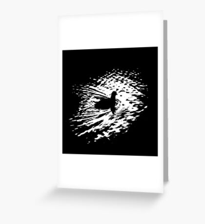 Coot, silhouette as swimming on a pond Greeting Card
