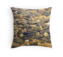 Ross and Locke water 1 Throw Pillow