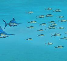 Blue Marlin and Yellowfin Tuna by Walter Colvin