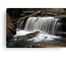 Waterfall V Canvas Print