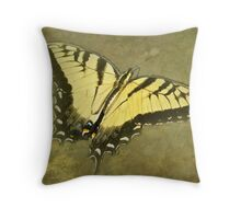 Tiger Swallowtail Butterfly - Papilio glaucas Throw Pillow