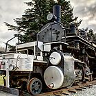 US Plywood #11 Mallet 2-6-6-2 by Dale Lockwood