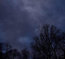 The Storm by Robert Plummer