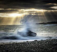 Salt Spray by Michael Treloar