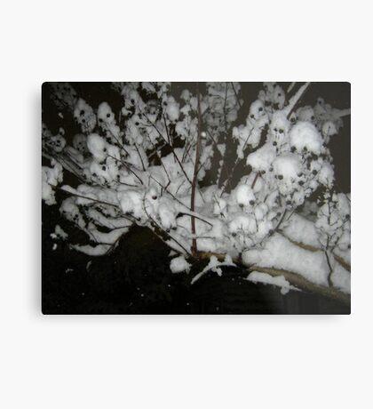 Feb. 19 2012 Snowstorm 35 Metal Print