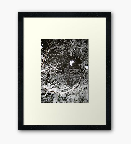 Feb. 19 2012 Snowstorm 37 Framed Print