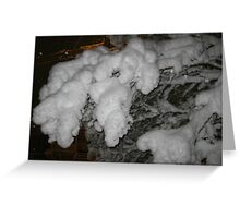 Feb. 19 2012 Snowstorm 38 Greeting Card