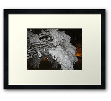 Feb. 19 2012 Snowstorm 39 Framed Print