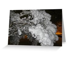 Feb. 19 2012 Snowstorm 39 Greeting Card