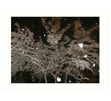 Feb. 19 2012 Snowstorm 40 Art Print