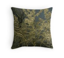 Feb. 19 2012 Snowstorm 41 Throw Pillow