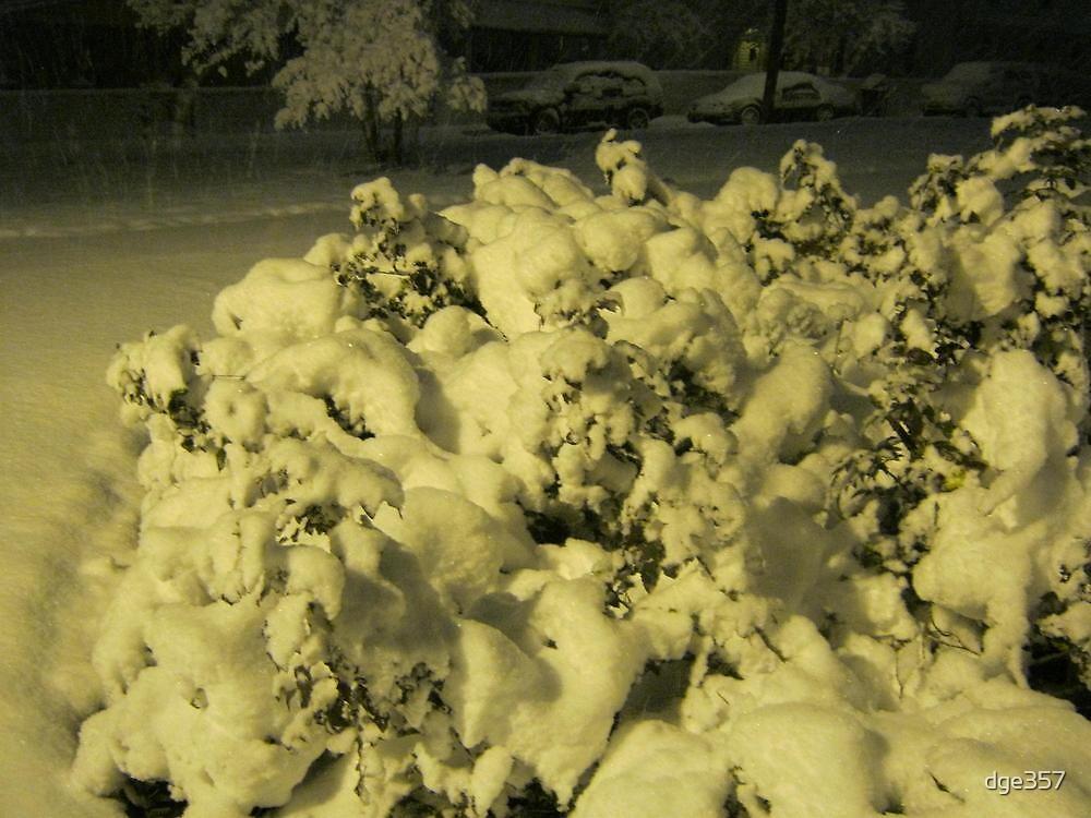 Feb. 19 2012 Snowstorm 42 by dge357