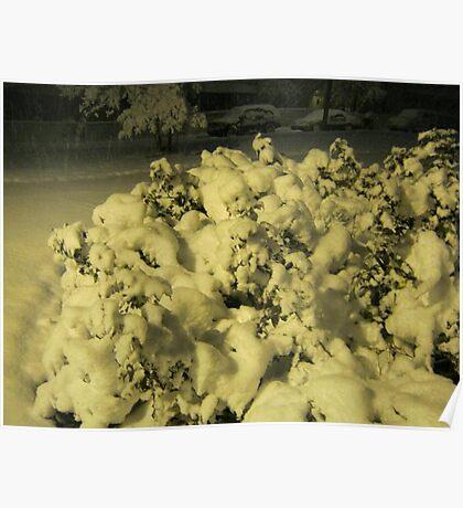 Feb. 19 2012 Snowstorm 42 Poster