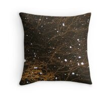 Feb. 19 2012 Snowstorm 44 Throw Pillow