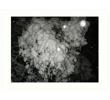 Feb. 19 2012 Snowstorm 46 Art Print