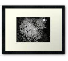 Feb. 19 2012 Snowstorm 46 Framed Print