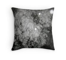 Feb. 19 2012 Snowstorm 46 Throw Pillow