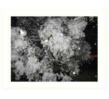 Feb. 19 2012 Snowstorm 47 Art Print