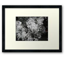 Feb. 19 2012 Snowstorm 47 Framed Print
