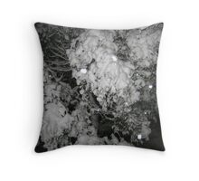 Feb. 19 2012 Snowstorm 47 Throw Pillow