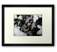 Feb. 19 2012 Snowstorm 48 Framed Print