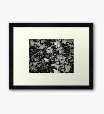 Feb. 19 2012 Snowstorm 49 Framed Print