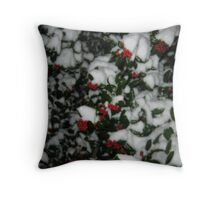 Feb. 19 2012 Snowstorm 49 Throw Pillow