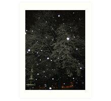 Feb. 19 2012 Snowstorm 50 Art Print
