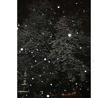 Feb. 19 2012 Snowstorm 50 Photographic Print